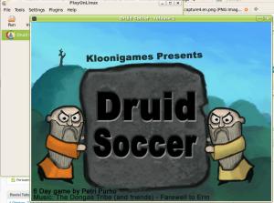 druit-soccer